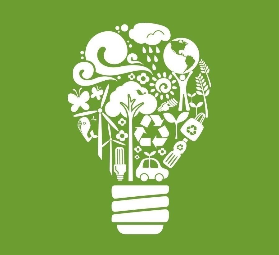 Light Bulb Recycling Guide