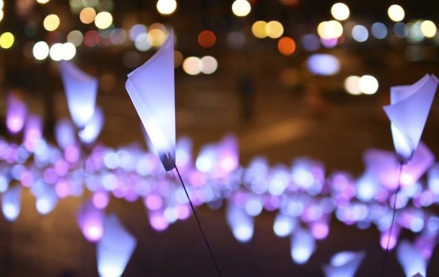 Tribeca LED Light Flowers