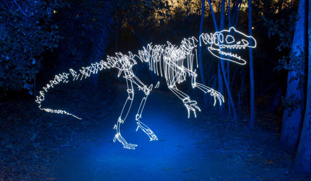 Dinosaur - LED Light Painting By Darren Pearson