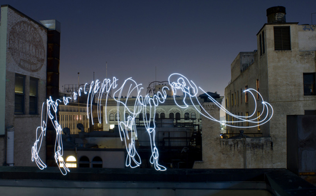 Elephant - LED Light Painting By Darren Pearson