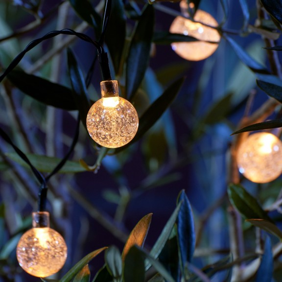 Orb festoon lights in trees